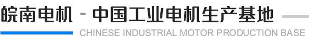 皖南电机 中国工业用电机生产基地