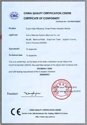现金赌博导航:CE认证证书