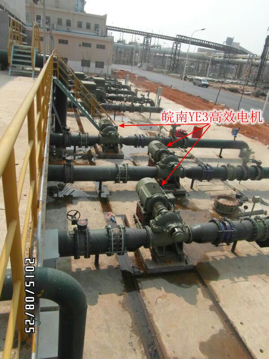 湛江钢厂基地-皖南YE3高效电机2.jpg