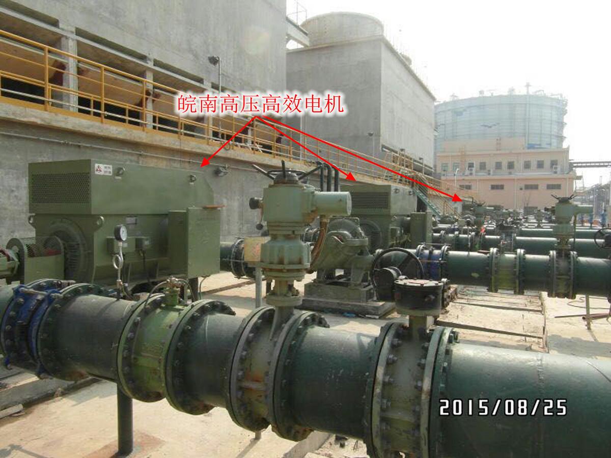 湛江钢厂基地-皖南高压高效电机.jpg