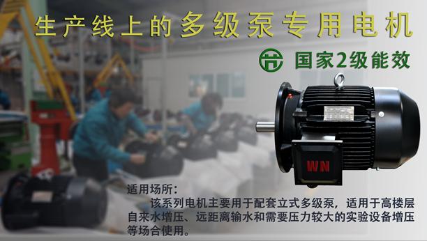 皖南多级泵专用电机