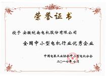 """皖南电机荣获 """"全国中小型电机行业知名品牌产品""""称号"""