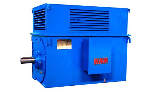 Y系列中型高压高效电动机