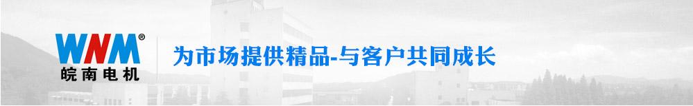 皖南电机 为市场提供精品