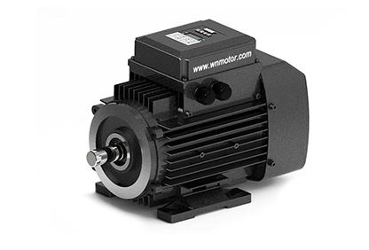 YZNP2系列智能控制三相异步电动机